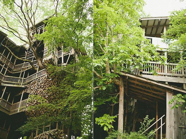 La-casa-del-Árbol-más-grande-del-mundo-por-Horace-Burgess2