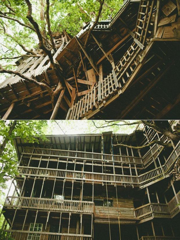 La-casa-del-Árbol-más-grande-del-mundo-por-Horace-Burgess3